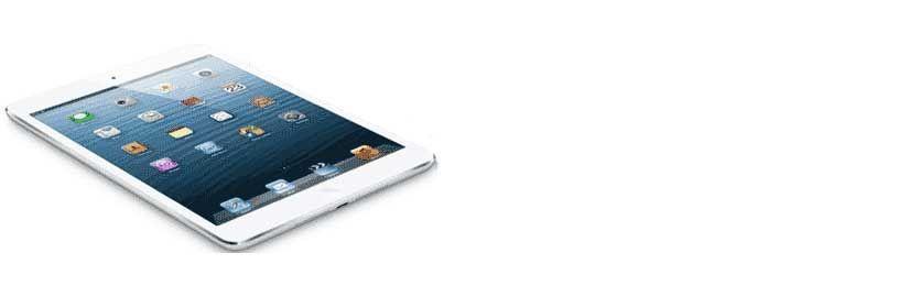 iPad Mini Reparatur